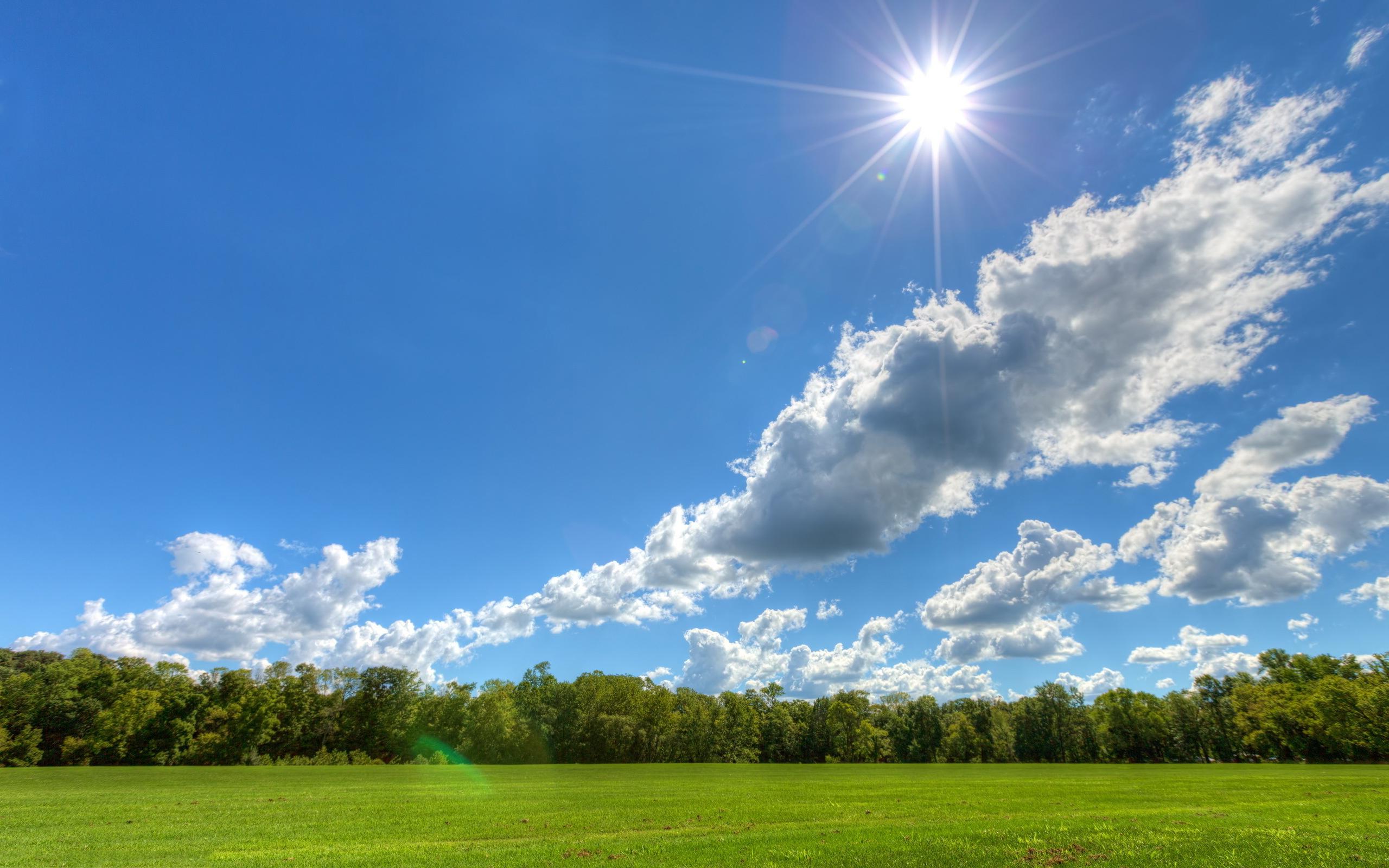 sunny-day-landscape.jpg